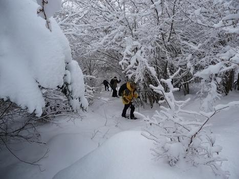 Pyrénées/raquettes : neige fraîche dans le val d'Aube|Le blog de Michel BESSONE | Vallée d'Aure - Pyrénées | Scoop.it