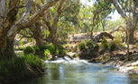Water for a Healthy Country | CSIRO | Water Quality | Scoop.it