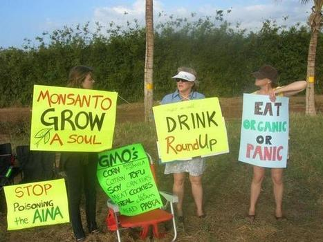 Op-Ed: Hawaii 1st US state to pass GMO labeling bill, but with amendment - DigitalJournal.com   What's Really In Our Food?   Scoop.it