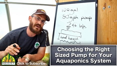 Comment on Sizing a Pump for Aquaponics or Hydroponics by Henerz | Aquaponics~Aquaculture~Fish~Food | Scoop.it