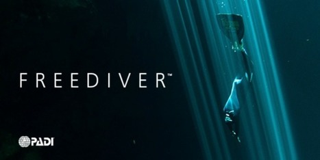 PADI To Launch Freediver Training Program - DeeperBlue.com | DiverSync | Scoop.it
