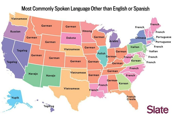 Map - The most common language in each US state, after English and Spanish | Nerdy Needs | Scoop.it