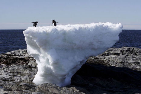 Climat: un glacier géant menace de surélever encore le niveau des mers | Carnets de plongée | Scoop.it
