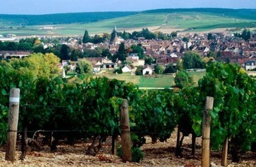 Why are Burgundy and Champagne so keen on being listed in this way? Why, indeed, was there a big push just before Christmas to get French wine officially recognised as being part of France's cultur... | Vitabella Wine Daily Gossip | Scoop.it