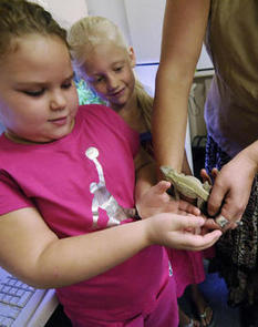 Groups put pets in classrooms  - Nation and World - Charleston Daily Mail - West Virginia News and Sports - | Behind the Curtain on TPPRadio.com | Scoop.it