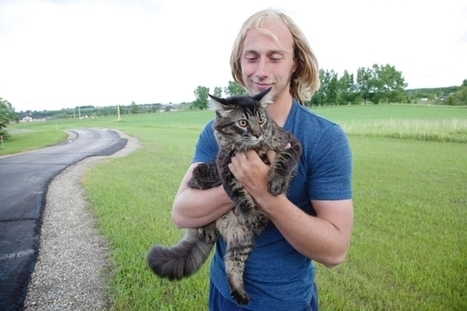 Momo the cat's owner surprised by feline's swim to safety | Business Services and News | Scoop.it