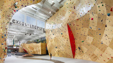 At This Coworking Space In A Climbing Gym, You Can Do Pull-Ups At Your Standing Desk | Future Workplace Trends | Scoop.it