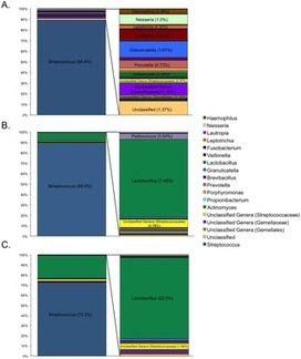 Metagenomic Analysis of Nitrate-Reducing Bacteria in the Oral Cavity: Implications for Nitric Oxide Homeostasis | Microbiome | Scoop.it