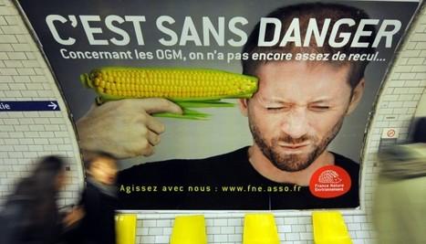 Les OGM sont des plantes pesticides : ils nous conduisent tout droit ... - Le Nouvel Observateur | Abeilles, intoxications et informations | Scoop.it