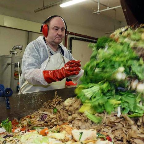 Vers un système alimentaire durable: Réduction des pertes et des gaspillages alimentaires :: IFPRI Publication   IFPRI Research   Scoop.it