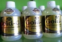 Khasiat Jelly Gamat | Agen Obat Herbal Terpercaya | Health | Scoop.it