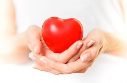 Nấm lim xanh có chữa được bệnh tim mạch? - Nấm lim xanh | ban xe oto | Scoop.it