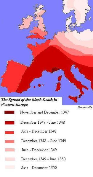 Black death | The black Death | Scoop.it