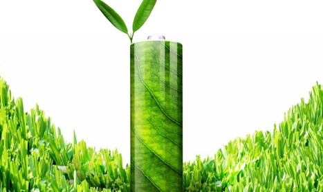 Scientists make eco-friendly batteries out of leaves | Fragments of Science | Scoop.it