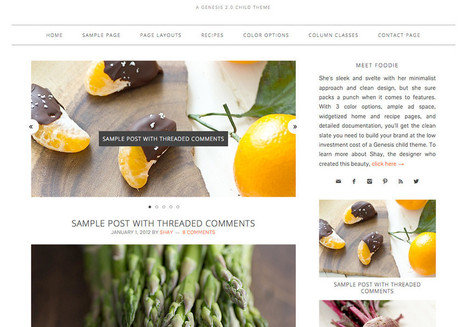 Foodie Child Theme for Genesis | Browsing | Scoop.it