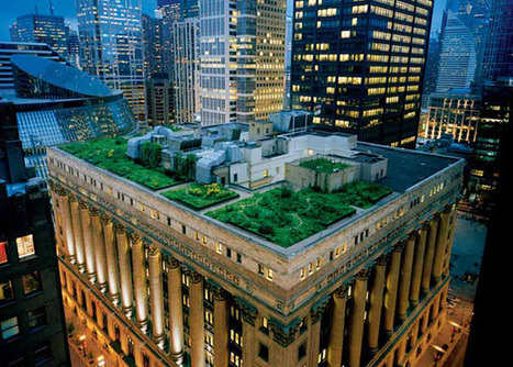 Green Roofs — National Geographic Magazine | Mom Ed | Scoop.it