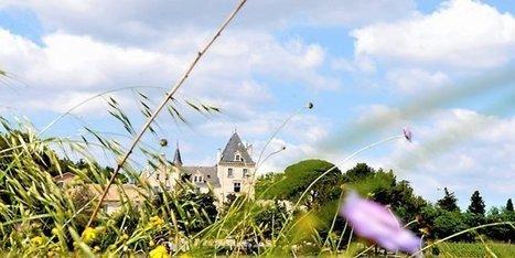 Oenotourisme : luxe au château les Carrasses en Languedoc | tourisme canal du midi | Scoop.it