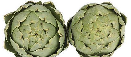 Artichaut   Plantes médicinales   Scoop.it