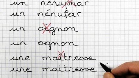 L'Académie française réagit à la réforme de l'orthographe | Infocom | Scoop.it