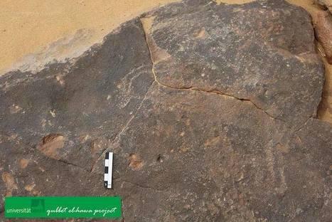 Prehistoric graffiti unearthed west of Aswan | Egiptología | Scoop.it