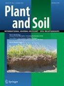Can Andean potatoes be agronomically biofortified with iron and zinc fertilizers? - Kromann &al (2016) - Plant Soil | Global Nutrition | Scoop.it