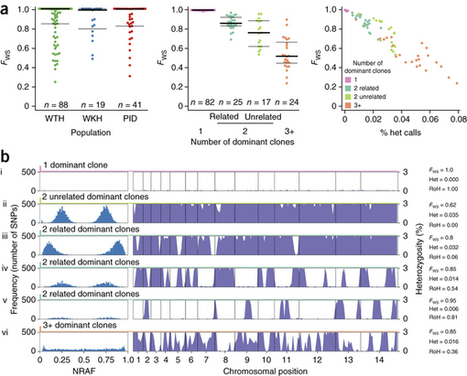 Genomic analysis of local variation and recent evolution in Plasmodium vivax : Nature Genetics : Nature Research | How microbes emerge | Scoop.it