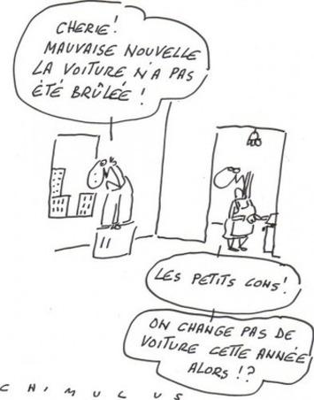Arnaque à l'assurance | Baie d'humour | Scoop.it