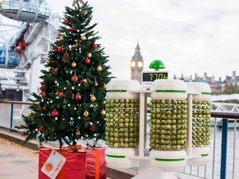 "World's first ""Brussels Sprout Battery"" lights up a Christmas tree 