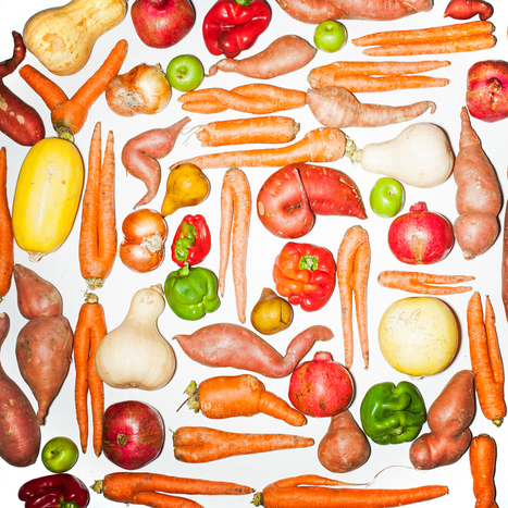 How 'Ugly' Fruits and Vegetables Can Help Solve World Hunger | Geography Education | Scoop.it