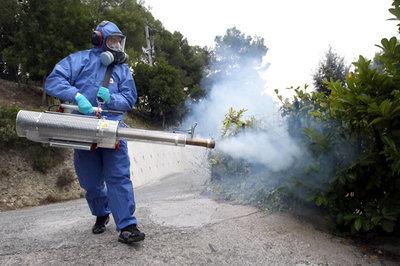 Le moustique (tigre), cet ennemi | Toxique, soyons vigilant ! | Scoop.it