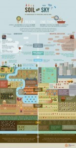 Feeding the World Sustainably: Agroecology vs. Industrial Agriculture (Infographic by the Christensen Fund) | Arrival Cities | Scoop.it