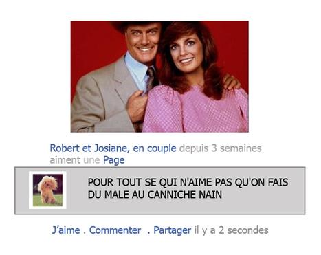 Apprend à détester tes amis avec Facebook - Amagzine | Amagzine | Papotages futiles et fous rires | Scoop.it