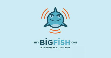 Hey Big Fish: The Story. The Concept. | tyesha snow | Frontiers of Journalism | Scoop.it
