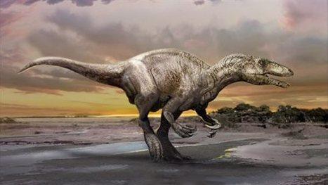L'Université de l'Alberta découvre une nouvelle espèce de dinosaure | Biodiversity protection | Scoop.it