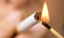 USA: British American Tobacco faces call for bribery allegations inquiry | Corruption | Scoop.it