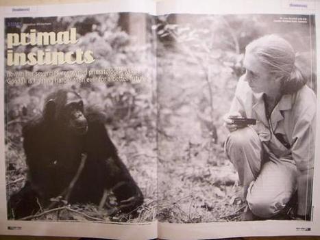 15 leçons de vie de la primatologue Jane Goodall | Learn a Language to use it, use it to learn it ! | Scoop.it