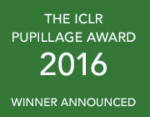 The first winner of the ICLR Pupillage Award | Legal In General | Scoop.it