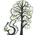 Luonto ja ympäristö | Oppiminen | yle.fi | FIM2 Luonto ja ympäristö | Scoop.it