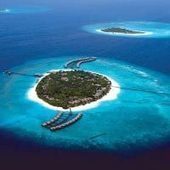 Saving Maldives coral reefs | Our Ailing Oceans | Scoop.it