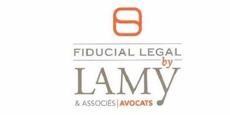 Lamy & associés : Fiducial coiffe EY sur le poteau   Droit d'avenir, une veille #OpenLaw   Scoop.it
