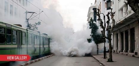 Tunisia's Ben Ali and Family Ran a 'Mafia State' - Newsweek | Coveting Freedom | Scoop.it