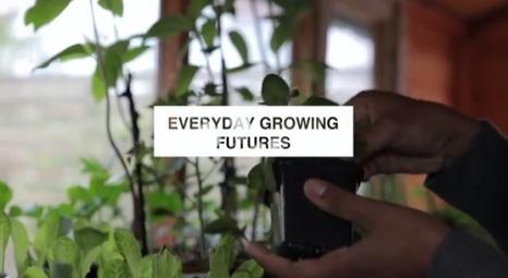 The Big Open Data Debate: urban agriculture | Urban Gardening | Scoop.it