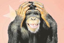 Get the marathon monkey off your back | Le Scoop it de la Course à Pied | Scoop.it