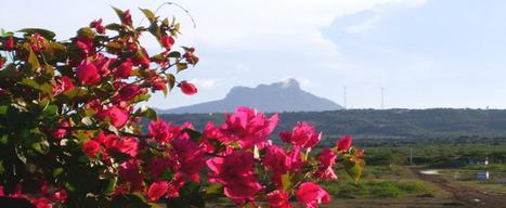 Hotel Villa Caribe Paraguana - Reservaciones en línea, Hotel, Spa, salones y eventos   turismo, hotel, apart, restaurantes, huesped, termas, viajes   Scoop.it