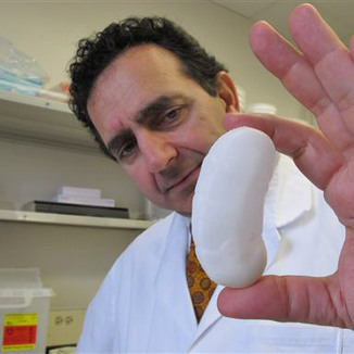 3D Printer Trumps Pig Parts for Kidney Replacements | Regenerative Medicine Kidney | Scoop.it