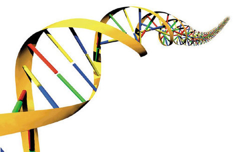 Rare Deletions Or Duplications Of DNA Tied To Bipolar Disorder | Psychology and Brain News | Scoop.it