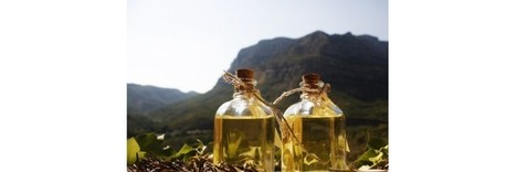 Aceites cosméticos - Glam Beauty   Lámpara de sobremesa Dina   Scoop.it