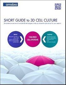 WHAT is 3D culture and WHY use it? | Physiologically Relevant Cell Culture | Scoop.it