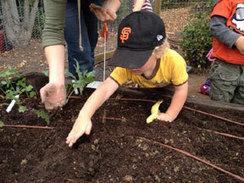 Gardening with Small Children   Gardening with kids   Scoop.it