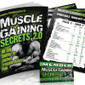 5 Secrets To Muscle Growth Using Any Program | Ab Workouts | Scoop.it